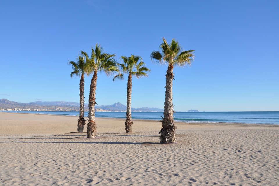 Hotel Albahia Alicante - shutterstock_67843792.jpg