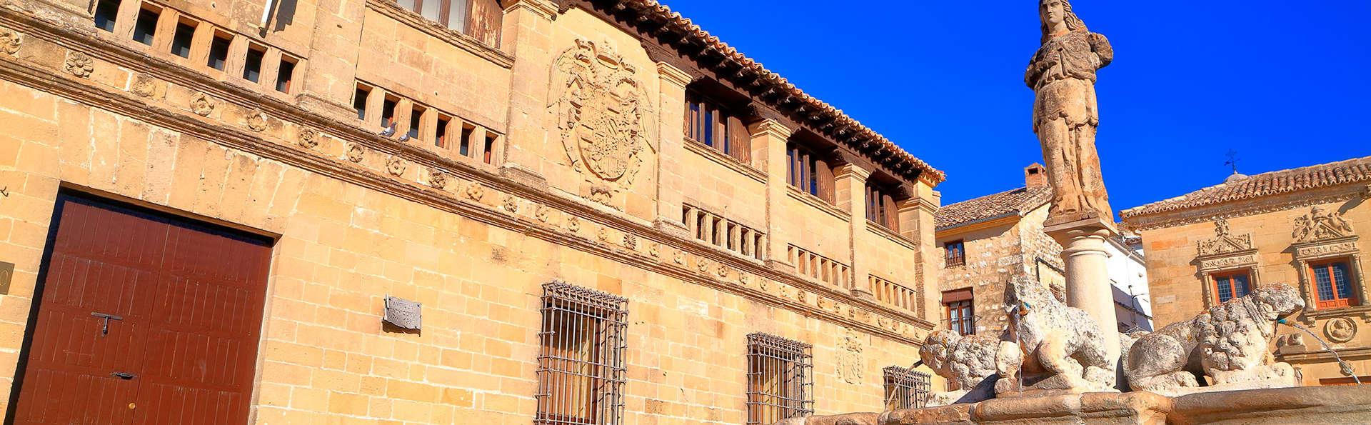 Hotel Palacio de los Salcedo - EDIT_destination.jpg