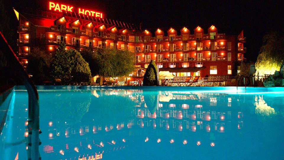 Hotel Park Puigcerdá - EDIT_frontpool.jpg