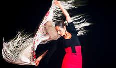 Entrée au spectacle de Flamenco pour 2 adultes