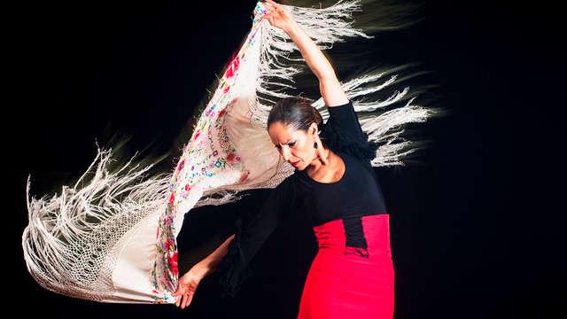 Entrada para el espectáculo de Flamenco para 2 adultos
