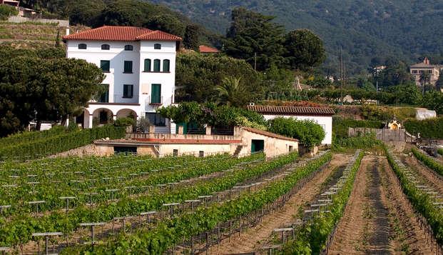 Descubre Alella: Zona de vinos y cavas