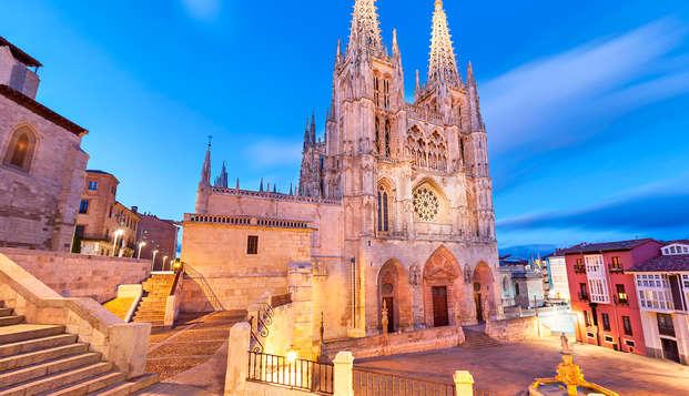 Escapada para visitar la bonita ciudad de Burgos