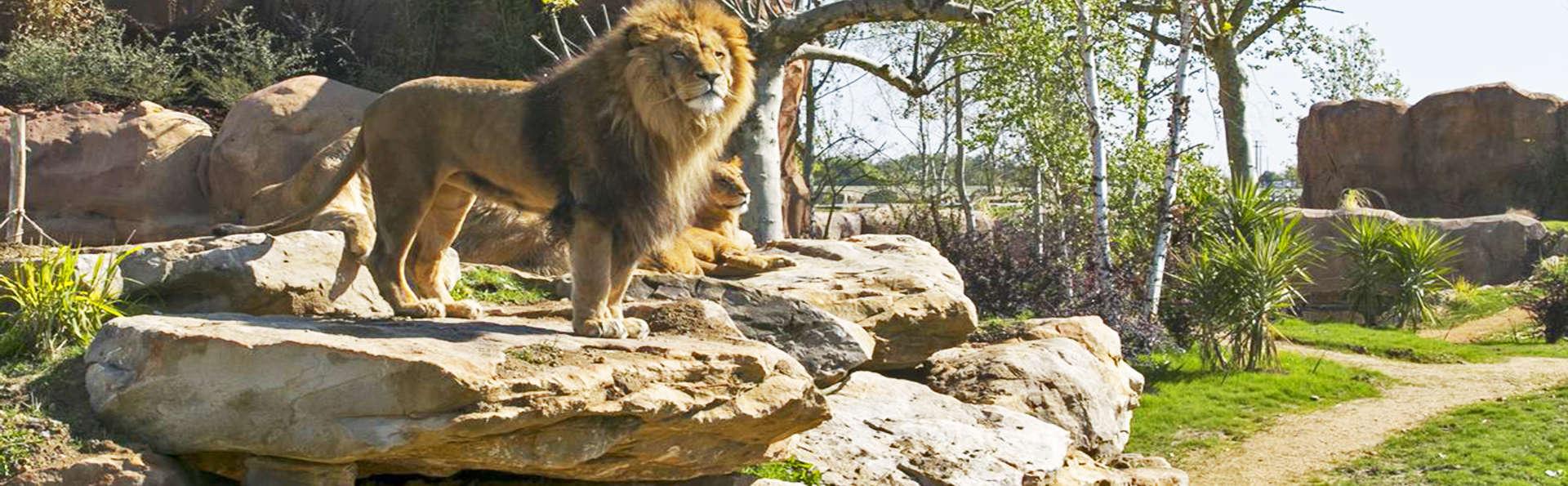 Visitez Tours et profitez d'entrées au Zoo Parc de Beauval (à partir de 2 nuits)