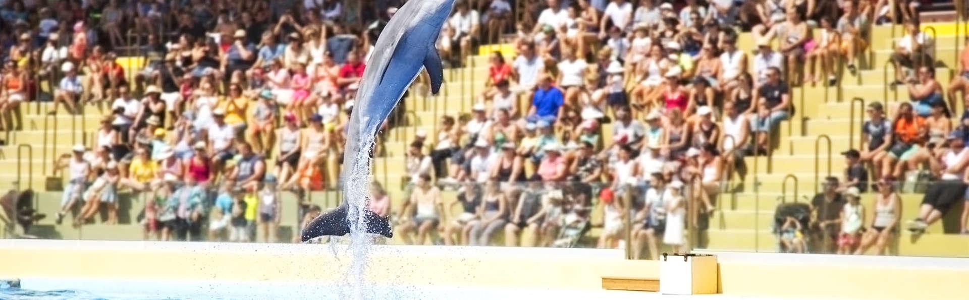 Partez à la découverte des otaries et des dauphins du Marineland