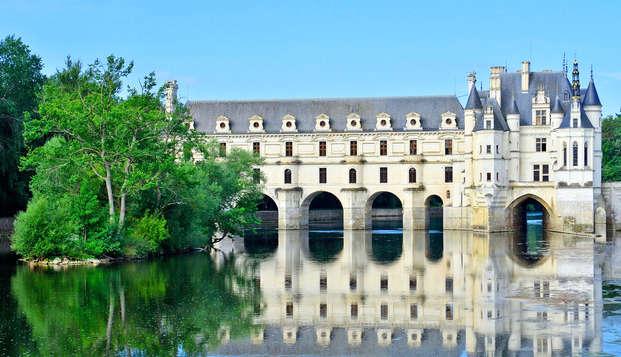 En famille à la découverte du zoo de Beauval et des châteaux de la Loire (à partir de 3 nuits)