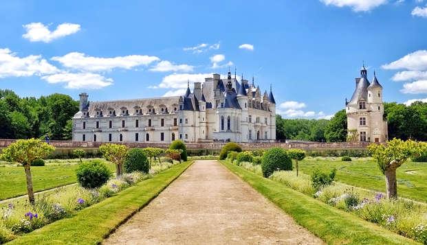 Escapade détente et gourmande avec entrées au Zoo de Beauval et château de Chenonceau (min 2 nuits)