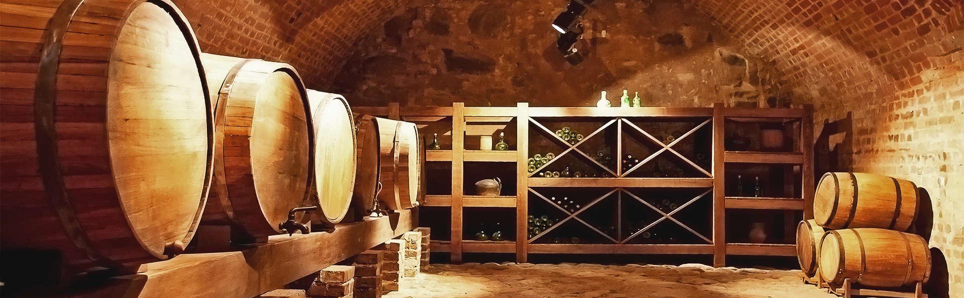 Visite de cava et dégustation de vin près de Valladolid