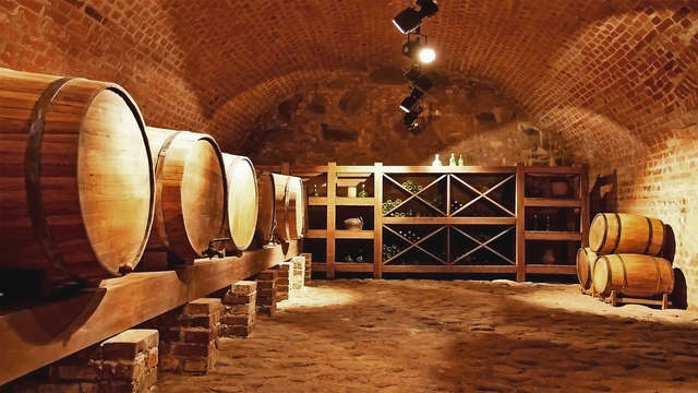 Escapada enológica con visita guiada a Bodega Emina y cata de vino