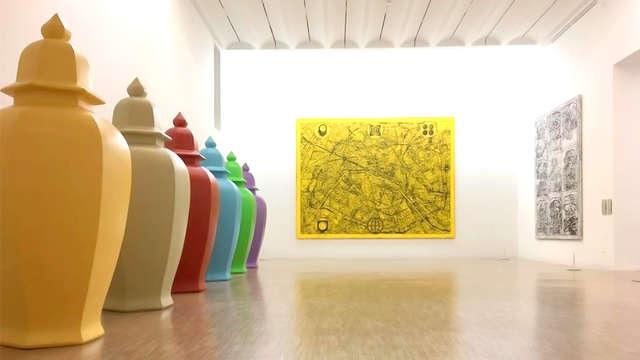Cultureel uitje met toegang tot het museum van moderne kunst in Lille