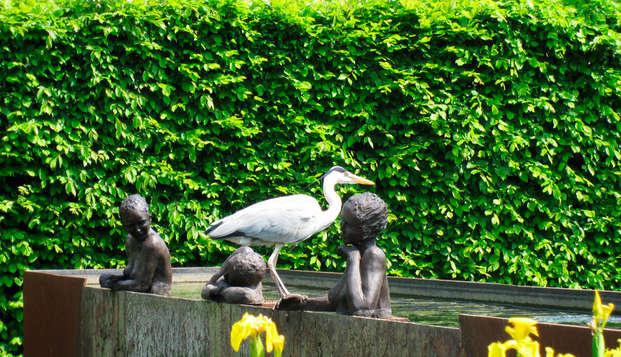 Montanus Hotel - NEW garden