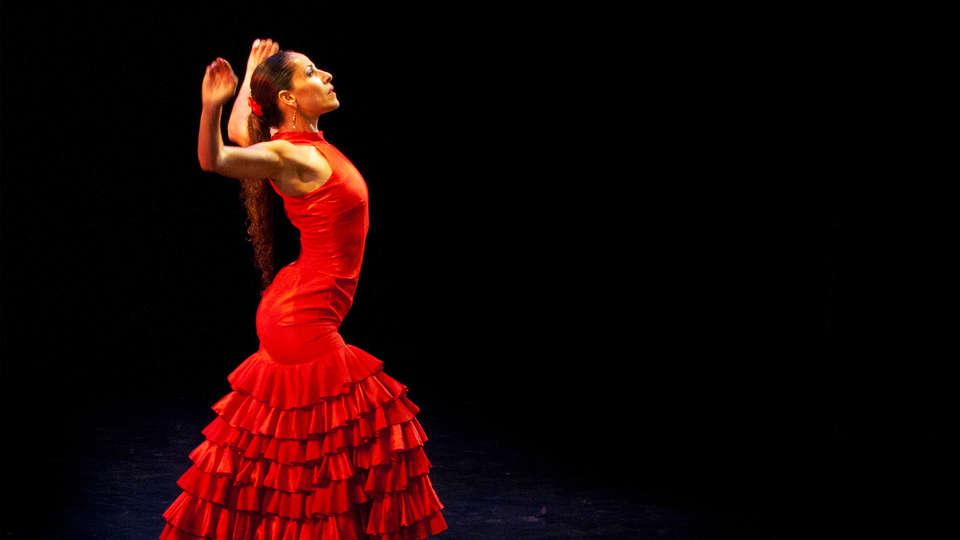 Hotel Zenit Borrell - EDIT_23_flamenco.jpg