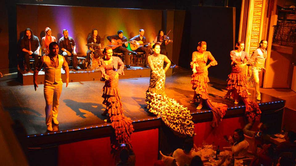 Hotel Zenit Borrell - EDIT_24_flamenco.jpg