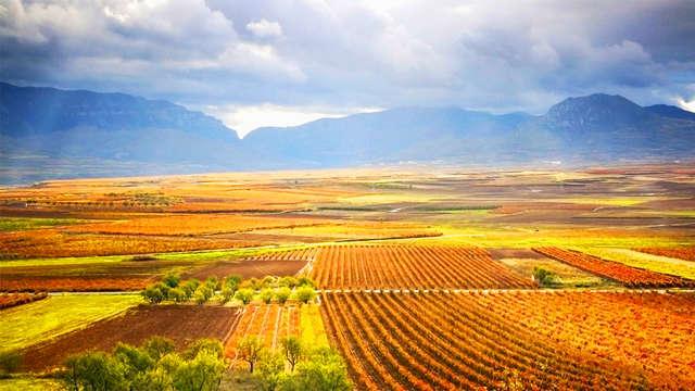 """Escapada Enológica: """"Enoturismo en La Rioja-Alavesa"""" (desde 2 noches)"""