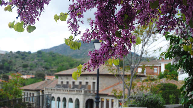 Escapada en esta magnífica posada con jardín con vermut gratuito en Burgohondo