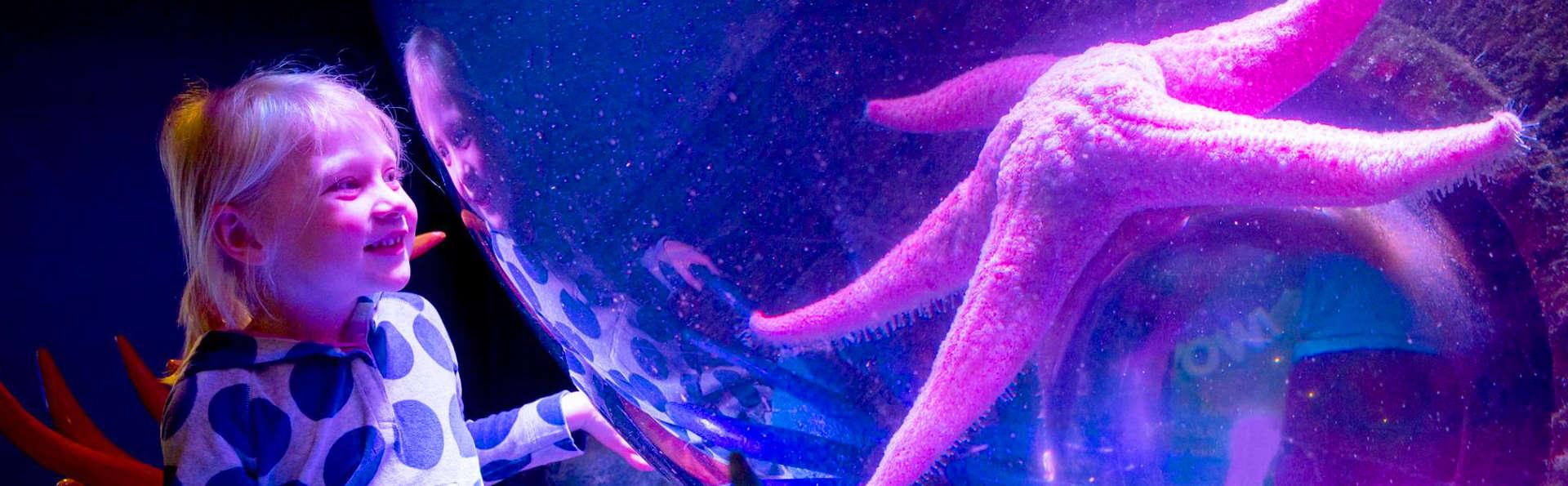 Découvrez l'Aquarium Sea Life près de Paris