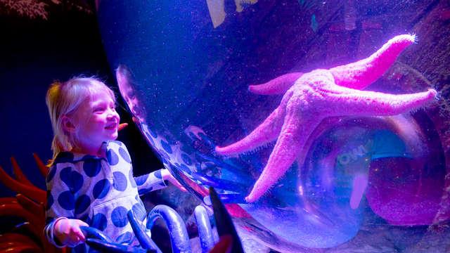 Descubre el Aquarium Sea Life cerca de París