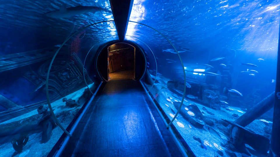 Appart'City Confort Marne La Vallée Val d'Europe  - EDIT_aquariumsea_3.jpg
