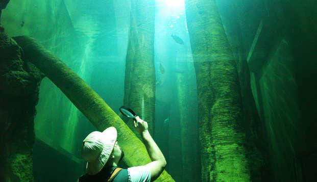 Descubre y explora los tesoros de Zaragoza y su acuario fluvial