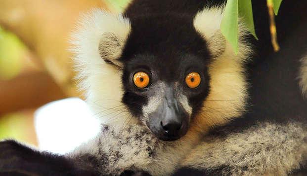 Week-end découverte avec entrée au Parc Zoologique de Paris