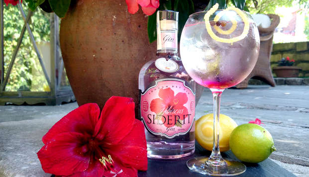 Découvrez Santillana del Mar dans un hôtel 5* avec gin tonic et jacuzzi (à partir de 2 nuits)