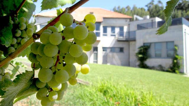 Romantisme à Sanxenxo avec visite du vignoble Adega Eidos