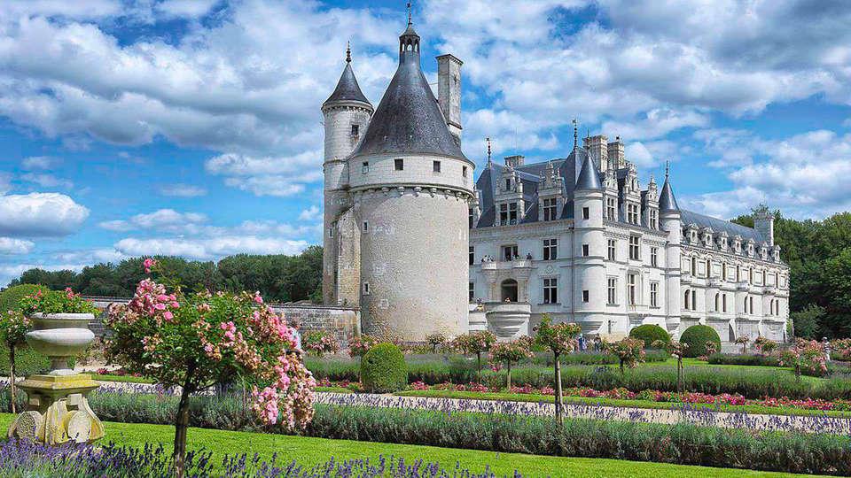 Château de la Bourdaisière - EDIT_chenonceau3.jpg