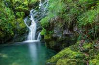 Nacedero del Río Zirauntza -