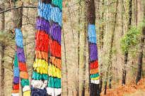 Bosque Pintado de Oma -