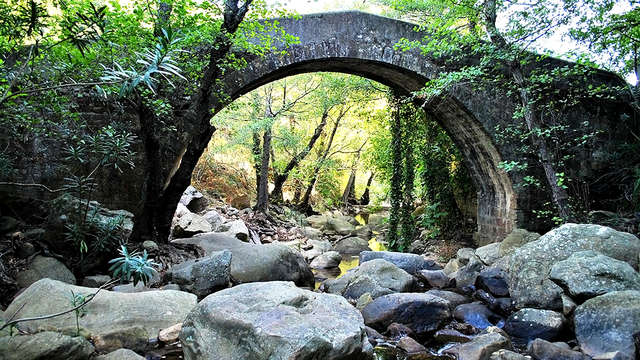 Senderismo con guía especializado por el Parque Natural de los Alcornocales