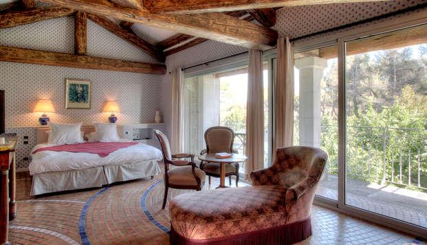 Séjour reposant dans une élégante auberge à deux pas d'Avignon