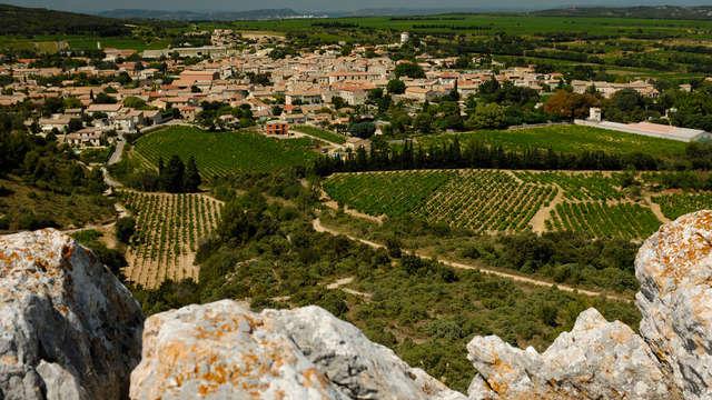 Week-end dégustation de vin près d'Avignon