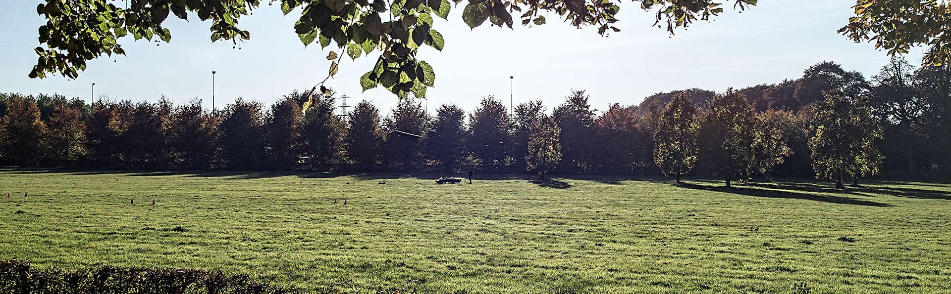 Buitenplaats Vaeshartelt - edit_surroundings2.jpg
