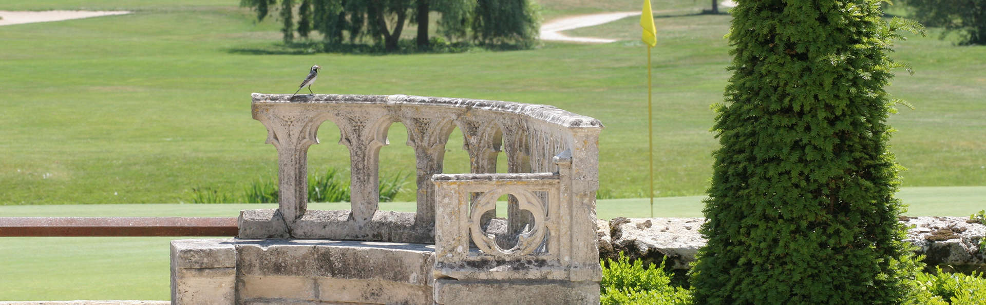 Château d'Augerville - edit_golf_ruine.jpg