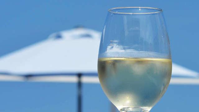 1 Degustación de vino