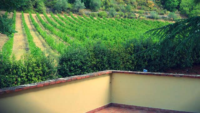Respira los aromas de la naturaleza entre los olivos y los viñedos de Umbría