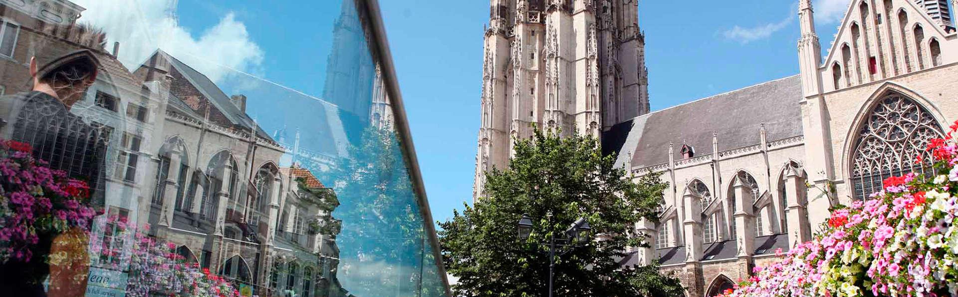 Découvrez la ville de Malines en bâteau et depuis la fameuse Tour Saint-Rombaut (àpd 2 nuits)
