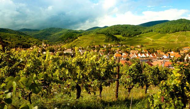 Escapade sur la Route des Vins d'Alsace (à partir de 2 nuits)