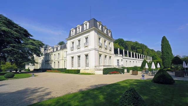 Chateau de Rochecotte