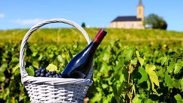 Escapada a Requena con visita a bodega y cata de vinos